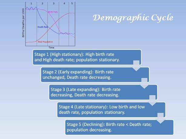 Demographic cycle